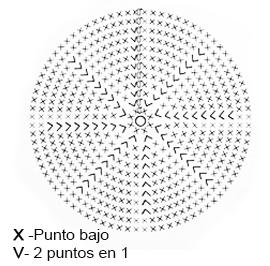 esqeuma-circulo-bc3a1sico